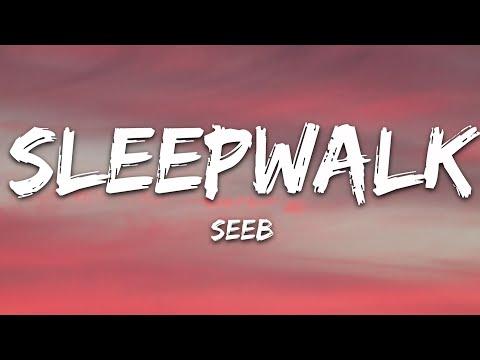 Seeb - Sleepwalk Feat Andreas Moe
