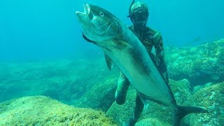 TOP 10 SHOTS - Pesca Submarina en Canarias