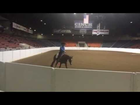 2015 AQHA Youth Tie-Down Roping and Heeling from YouTube · High Definition · Duration:  1 minutes 46 seconds  · 2.000+ views · uploaded on 08.08.2015 · uploaded by AQHA Video