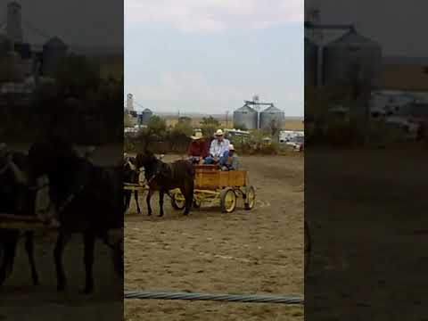 Tribute to Fred crane at the Dubois rodeo