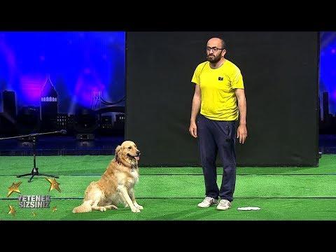 Savaş Ve Vogi   En İyi Hayvan Gösterisi    6.Sezon   Yetenek Sizsiniz Türkiye