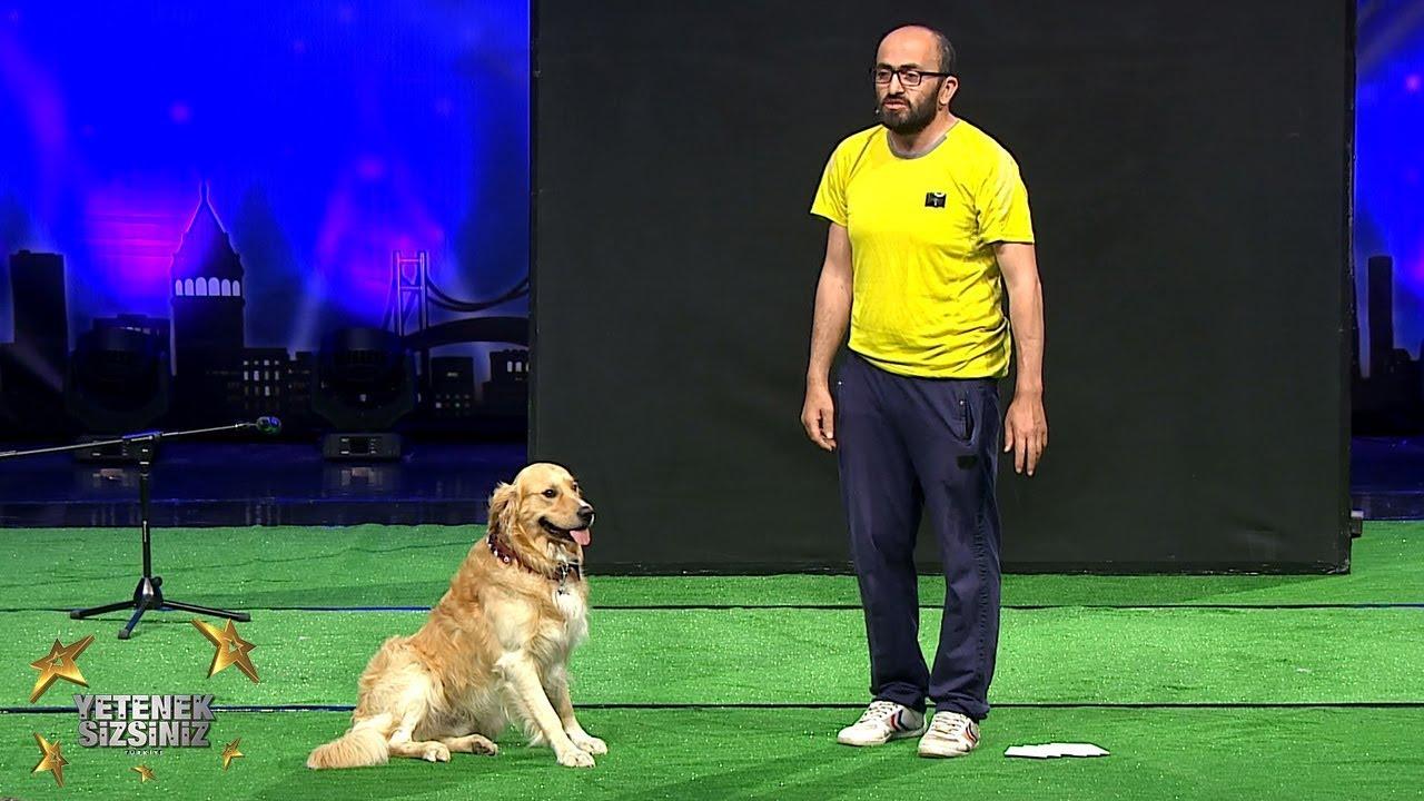 Savaş ve Vogi | En İyi Hayvan Gösterisi |  6.Sezon | Yetenek Sizsiniz Türkiye