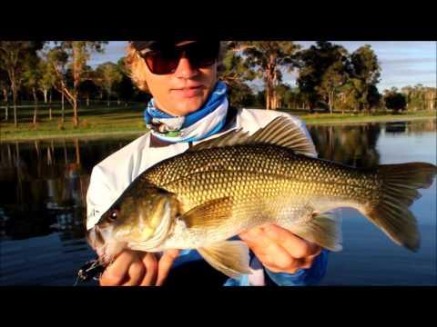 Fly Fishing for Bass Tuna Saratoga