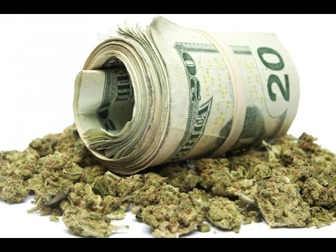 Medical Marijuana Stocks in Florida Claiming to Make Fortune
