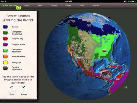 3D Interactive Globe