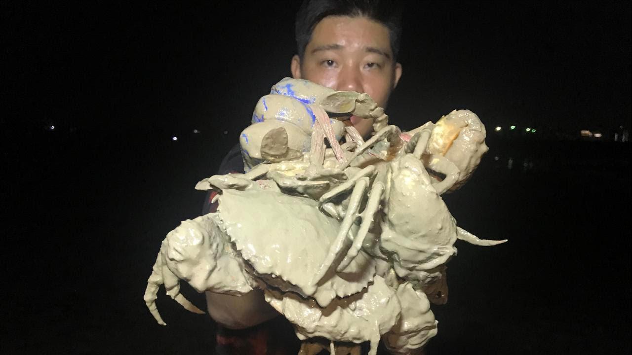 淤泥地里的青蟹没人抓,个头一个比一个大,阿兴连抓几个猛货,真是太过瘾了【兴哥赶海】
