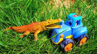 Синий трактор едет по дороге и встречает крокодила. Трактор видео для детей.