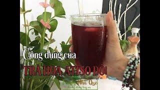 CÔNG DỤNG CỦA TRÀ HOA ATISO ĐỎ - Health Benefits of Hibiscus Tea