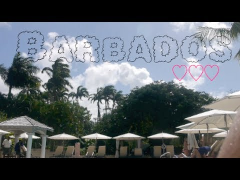 Honeymooning in Barbados ♡