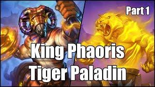 [Hearthstone] King Phaoris Tiger Paladin (Part 1)