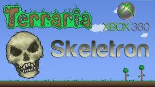 Terraria Xbox - Skeletron [17]