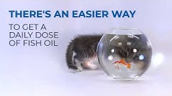 The Best Way For Your Cat to Get Fish Oil - Rx Vitamins for Pets