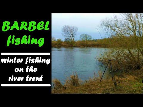BARBEL FISHING| Winter Fishing On The RIVER TRENT!