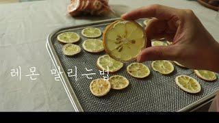 레몬 말리는법 ,리큅 IR D5 식품건조기(+말린레몬으…
