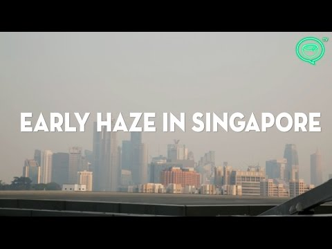 Haze hits Singapore early in 2016 | Coconuts TV