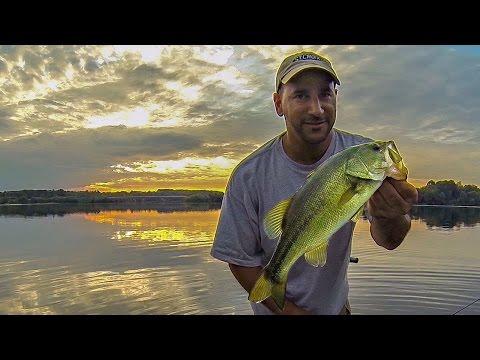 BASS FISHING (DEEP SUMMER WEED LINES)