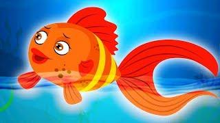 Machli Jal Ki Rani Hai | Hindi Rhymes | मछली जल की रानी है | Hindi Nursery Rhymes | Kids Rhymes