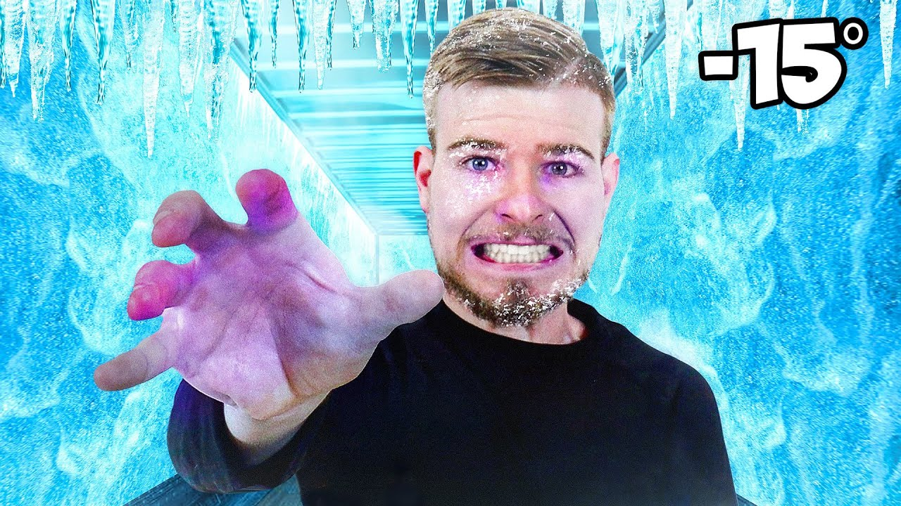 Download Surviving 24 Hours In A Freezer