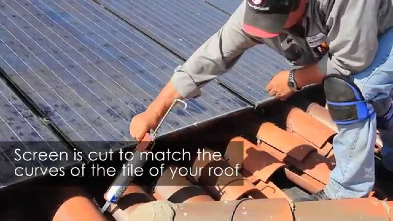 Bird Dropping Clean Up Around Solar Panels | Pro Pacific Pest Control ...