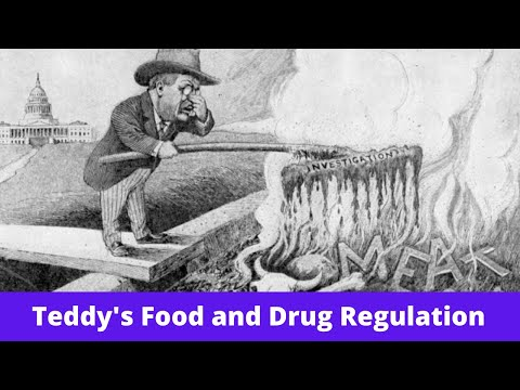 History Brief: Teddy's Food And Drug Regulation