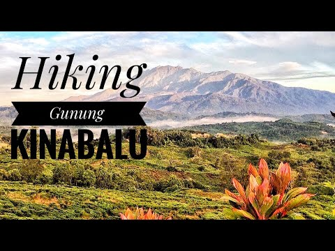 tinggi tinggi gunung kinabalu mp3 free download