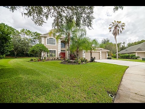 Palm Harbor Luxury Homes For Sale:4037 Auston Way Palm Harbor,FL-The Sakkis Group|Keller Williams
