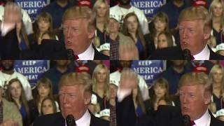 Trump, Remixed [