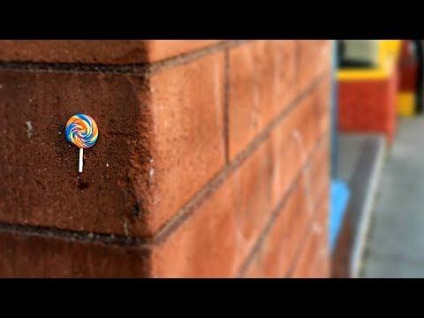Tiny food art hidden all over Ottawa
