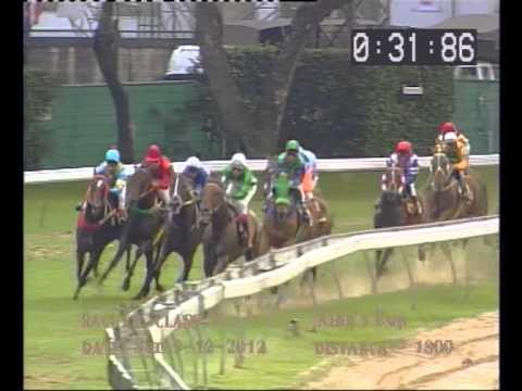 Danthai NewSeason #ม้าแข่งชิงถ้วยพระราชทาน คิงส์คัพ 9 ธันวาคม 2555