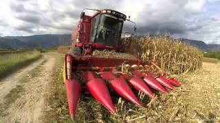 C/Terzi Da Ros - Mais Harvest 2015 *GoPro*