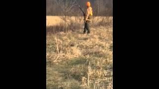 Quail Hunting 12/20/2014 West Virginia