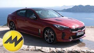 Kia Stinger | Supercars |Motorvision