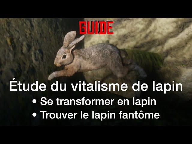 [GUIDE] Se transformer en lapin avec l'étude de vitalisme • Red Dead Online