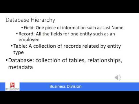 Management Information Systems: Data and Databases