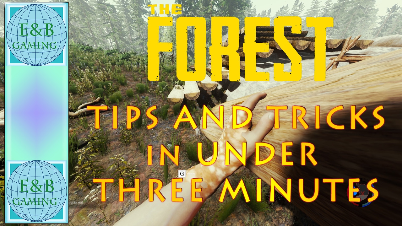 The Forest Tipps