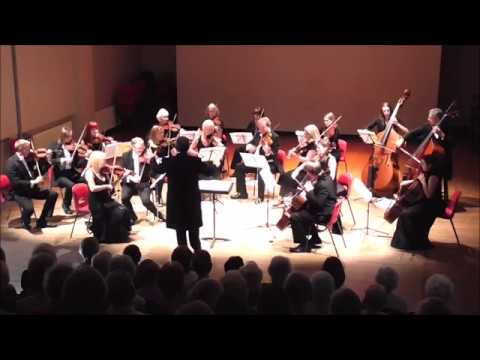 Brahms Hungarian Dance No  5