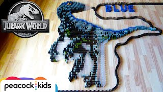 Blue & MORE Dinosaurs in 25,000 Dominoes! | JURASSIC WORLD