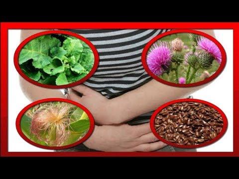ПАНКРЕАТИТ : ЛЕЧЕНИЕ ТРАВАМИ + диета . Эффективное ЛЕЧЕНИЕ ПОДЖЕЛУДОЧНОЙ ЖЕЛЕЗЫ без лекарств .