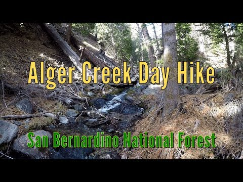Alger Creek Day Hike - San Bernardino National Forest