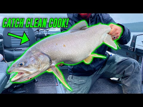 Mackinaw Lake Trout Fishing CATCH, CLEAN, & COOK!