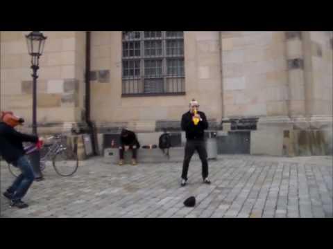 Dresdner Kultur