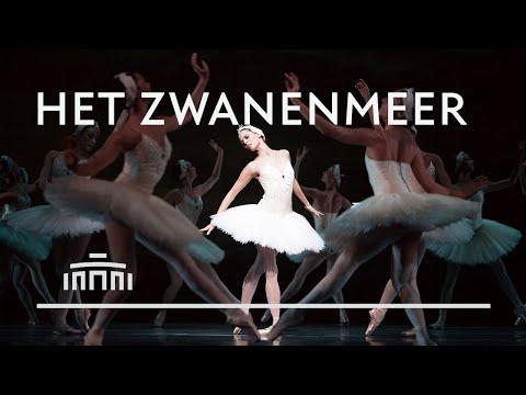 Swanlake (2019) - Dutch National Ballet