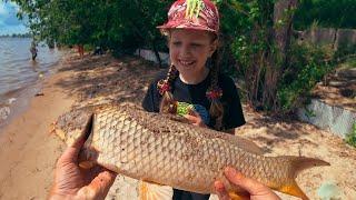 Эту рыбу ждал давно Долбанул сазан Рыбалка 2020 на фидер донку Ловля сазана на Волге
