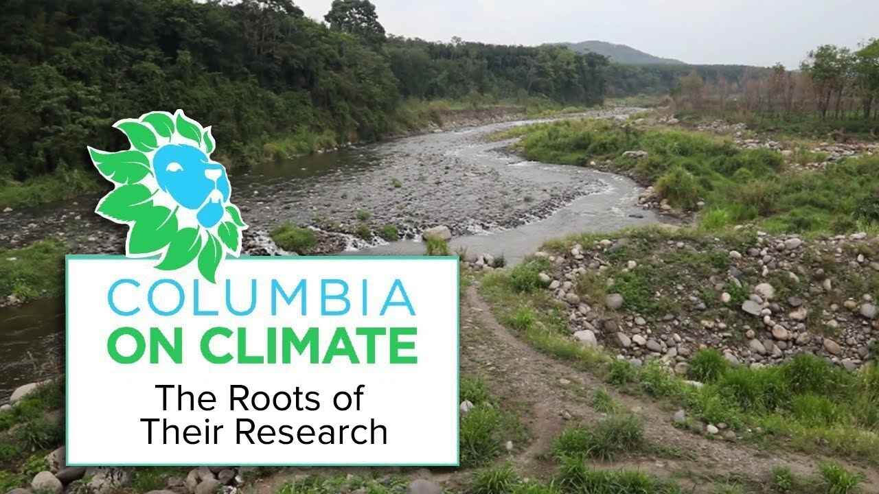 The Roots of Their Research