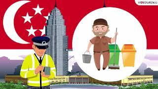 видео Сколько времени длится декретный отпуск по закону