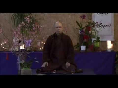 Học Thiền[Thích Nhất Hạnh hướng dẫn thiền ]