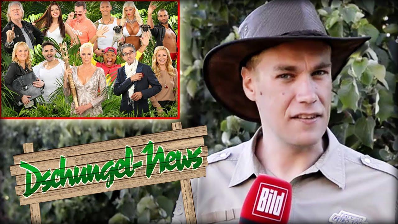 Dschungel News