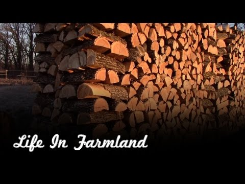 5 helpful tips if you cut and heat with firewood