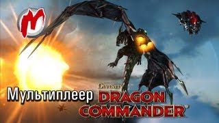 ✈ Мультиплеер Divinity: Dragon Commander