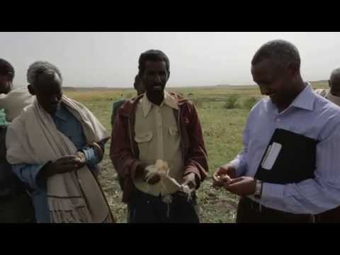 Health and Climate Change in Africa Documentary